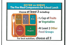 Troy Area School District National School Lunch Components
